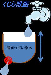 緑内障図01.png